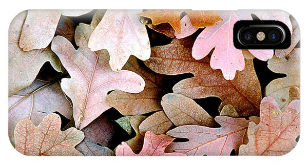 Oak Leaves Photo IPhone Case
