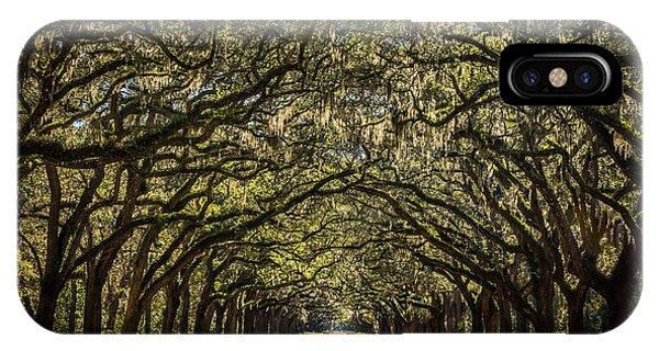 Oak Tree Tunnel IPhone Case