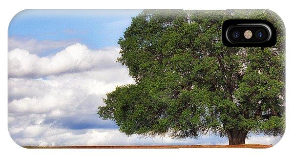 Oaktree IPhone Case