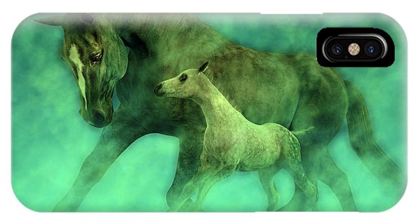 Tribute iPhone Case - Ocean Mist Morning by Betsy Knapp