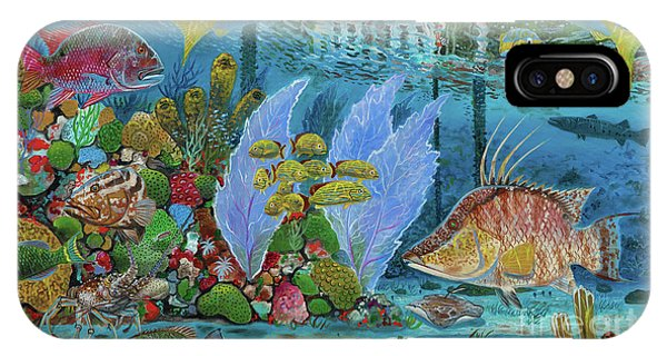 iPhone Case - Ocean Reef Paradise by Carey Chen