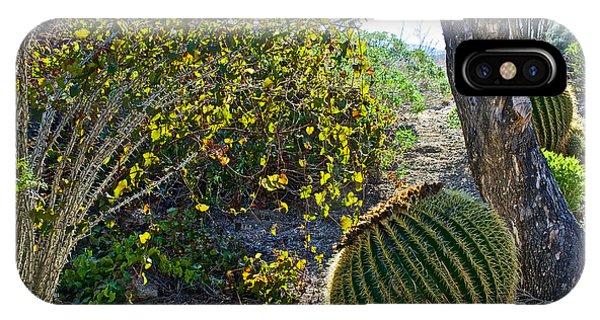 Living Desert Zoo And Gardens iPhone Cases | Fine Art America