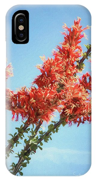 Ocotillo In Bloom IPhone Case
