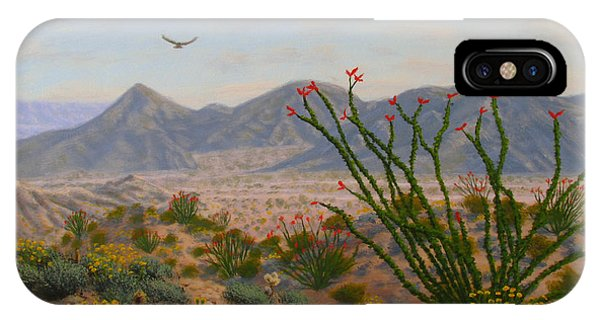 iPhone Case - Ocotillo Paradise by Mark Junge