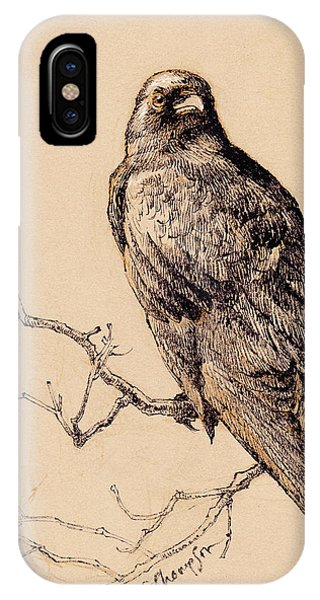 Raven iPhone Case - October Crow by Tracie Thompson
