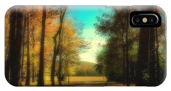 October Path Phone Case by Steven Gordon