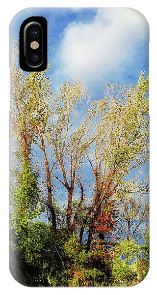 October Sunny Afternoon IPhone Case