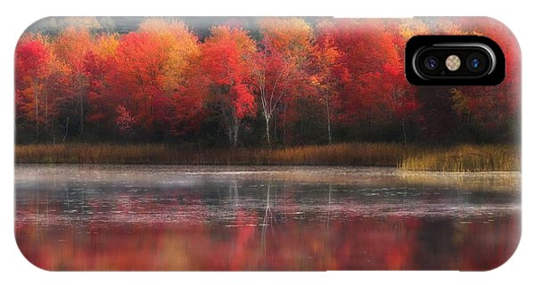 October Trees - Autumn  IPhone Case