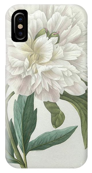 Redoute iPhone Case - Official Peony by Pierre Joseph Redoute