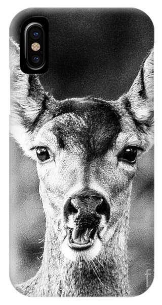 Oh, Deer, Black And White IPhone Case