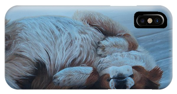 IPhone Case featuring the painting Dog Gone Tired by Tammy Taylor