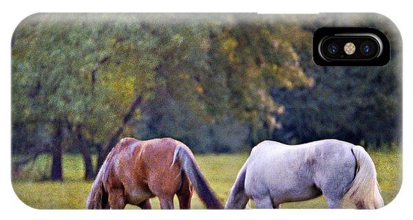 Ok Horse Ranch_2a IPhone Case