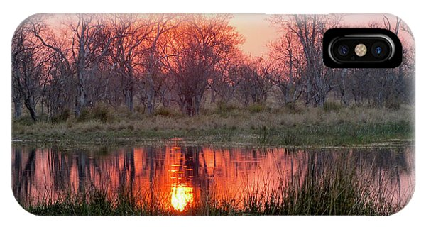 Okavango Delta IPhone Case