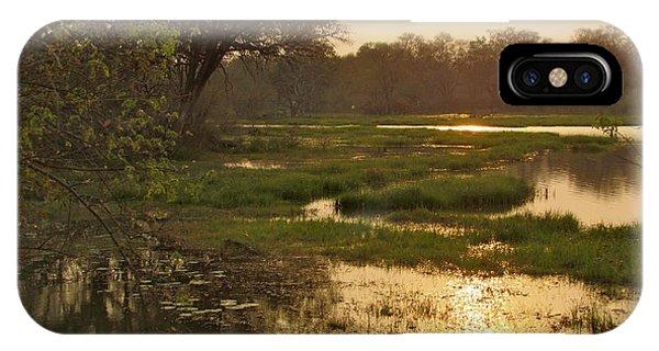 Okavango Delta Gold IPhone Case