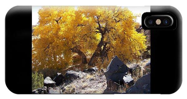 Old Cottonwood Below Black Rocks IPhone Case