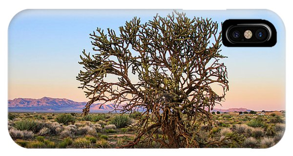 Old Growth Cholla Cactus View 2 IPhone Case