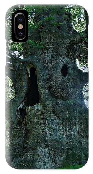 Old Man Tree IPhone Case
