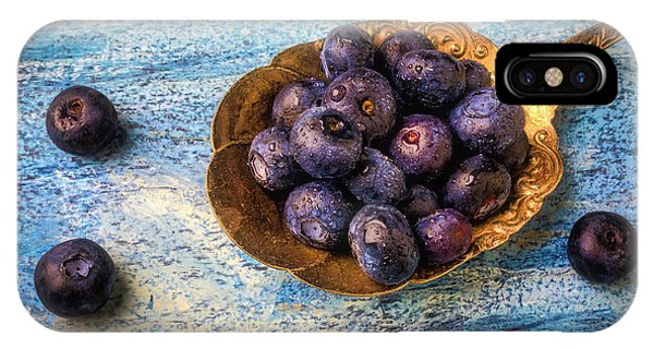 Blue Berry iPhone Case - Old Spoon Full Of Blueberries by Garry Gay