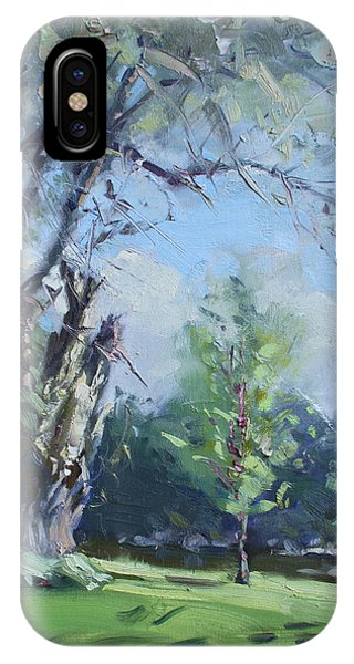 Creek iPhone Case - Old Tree And The Young by Ylli Haruni