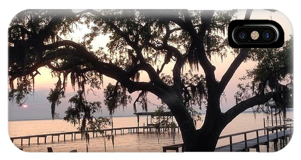 Old Tree At The Dock IPhone Case