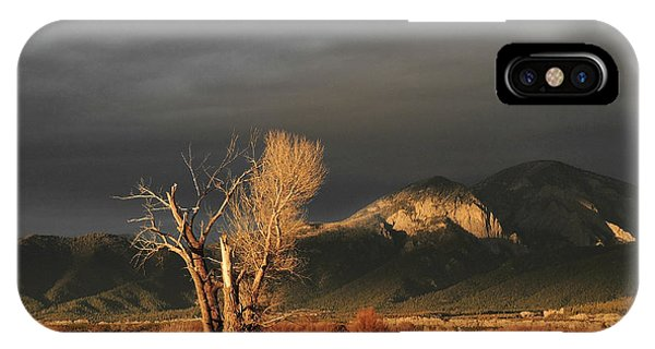 Sunset On The Old Cottonwood IPhone Case