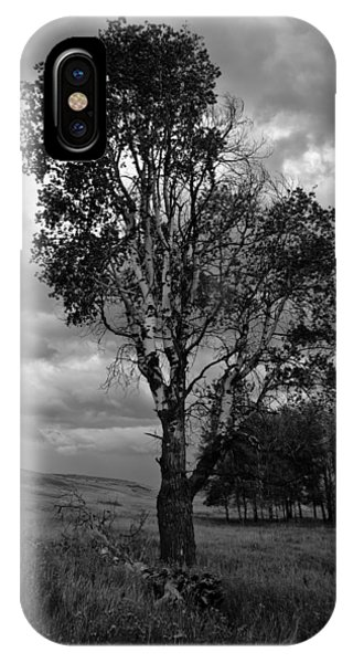 Old Tree, Lost Trail Wildlife Refuge IPhone Case