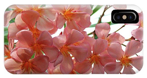 Oleander Dr. Ragioneri 4 IPhone Case