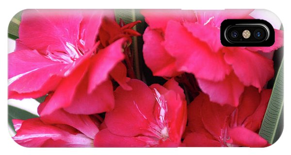 Oleander Geant Des Batailles 1 IPhone Case