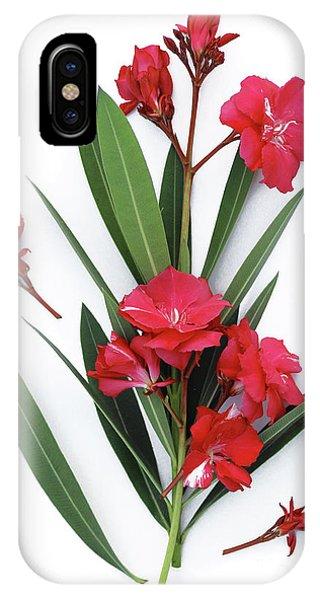 Oleander Geant Des Batailles 2 IPhone Case