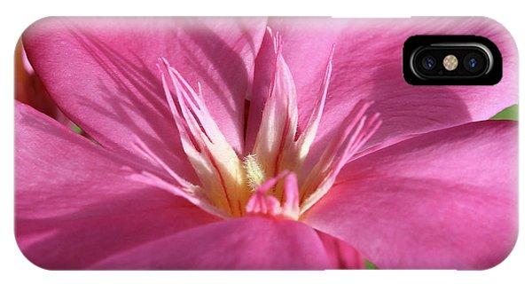 Oleander Maresciallo Graziani 3 IPhone Case