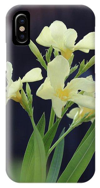 Oleander Marie Gambetta 2 IPhone Case