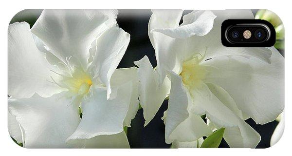 Oleander Mont Blanc 1 IPhone Case