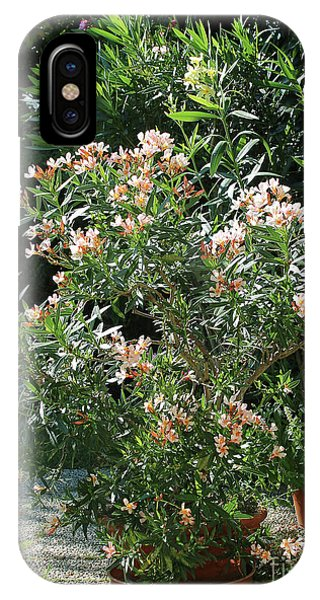 Oleander Petite Salmon 4 IPhone Case