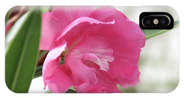 Oleander Splendens Giganteum 3 IPhone Case