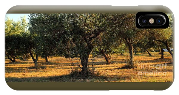 Olive Grove 3 IPhone Case