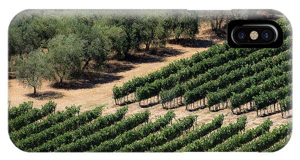 Olive Grove Meets Vineyard IPhone Case