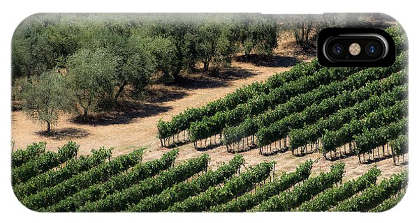 Olive Grove Meets Vineyard IPhone Case