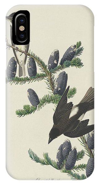 Olive-sided Flycatcher IPhone Case