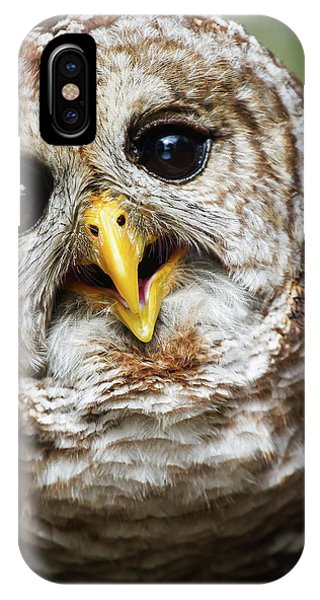 Oliver Owl IPhone Case