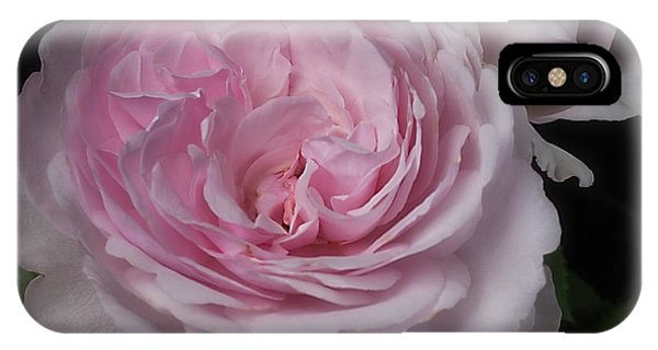 Olivia Austin Rose IPhone Case