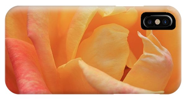 Ombre Rose IPhone Case