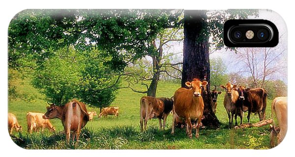 On Emerald Pastures Phone Case by Jan Amiss Photography