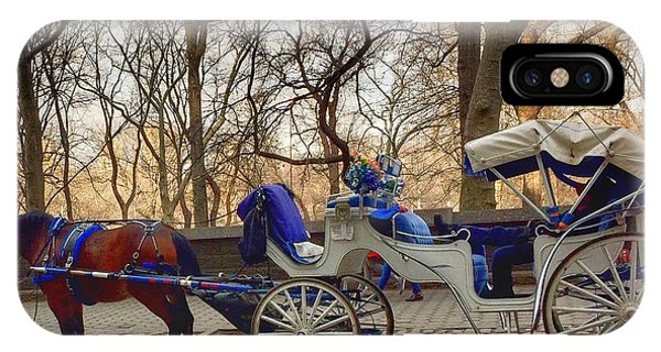 On My Bucket List Central Park Carriage Ride IPhone Case