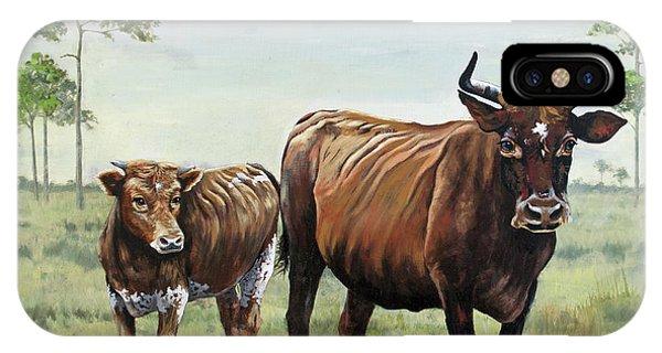 On The Florida Prairie Cracker Cattle IPhone Case