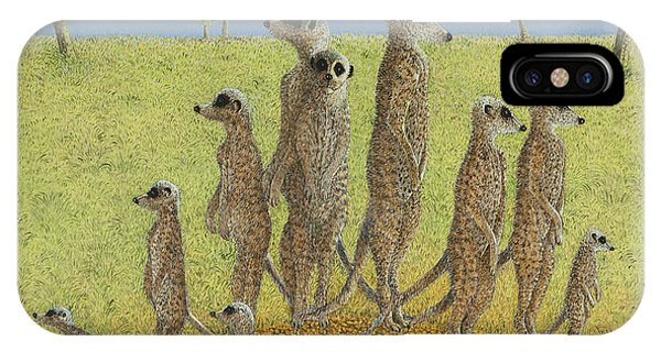 Meerkat iPhone Case - On The Lookout by Pat Scott