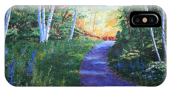 On The Path IPhone Case