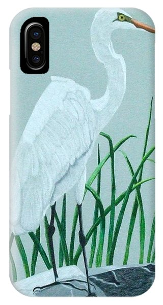 On The Rocks IPhone Case