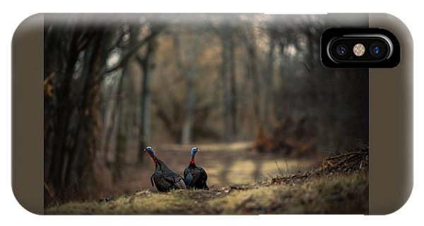 On The Woodlot Path IPhone Case