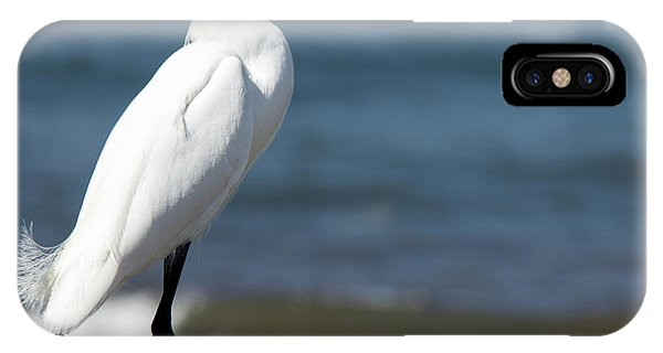 One Classy Chic Wildlife Art By Kaylyn Franks IPhone Case