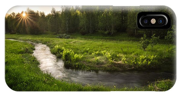Foliage iPhone Case - One Day Of Summer by Tor-Ivar Naess